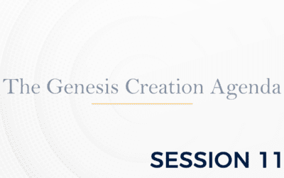 The Genesis: The Creation Agenda – Session 11