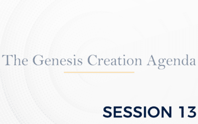 The Genesis: The Creation Agenda – Session 13