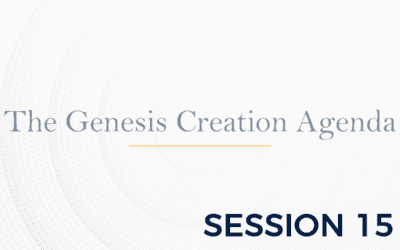 The Genesis: The Creation Agenda – Session 15