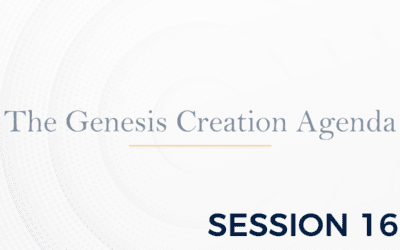 The Genesis: The Creation Agenda – Session 16