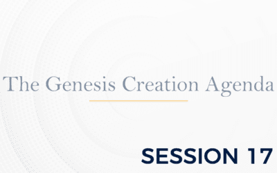 The Genesis: The Creation Agenda – Session 17