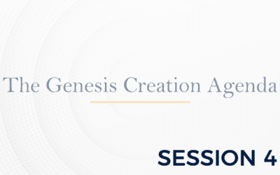 The Genesis: The Creation Agenda – Session 4