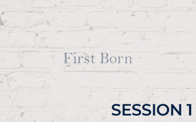 First Born POA – Session 1