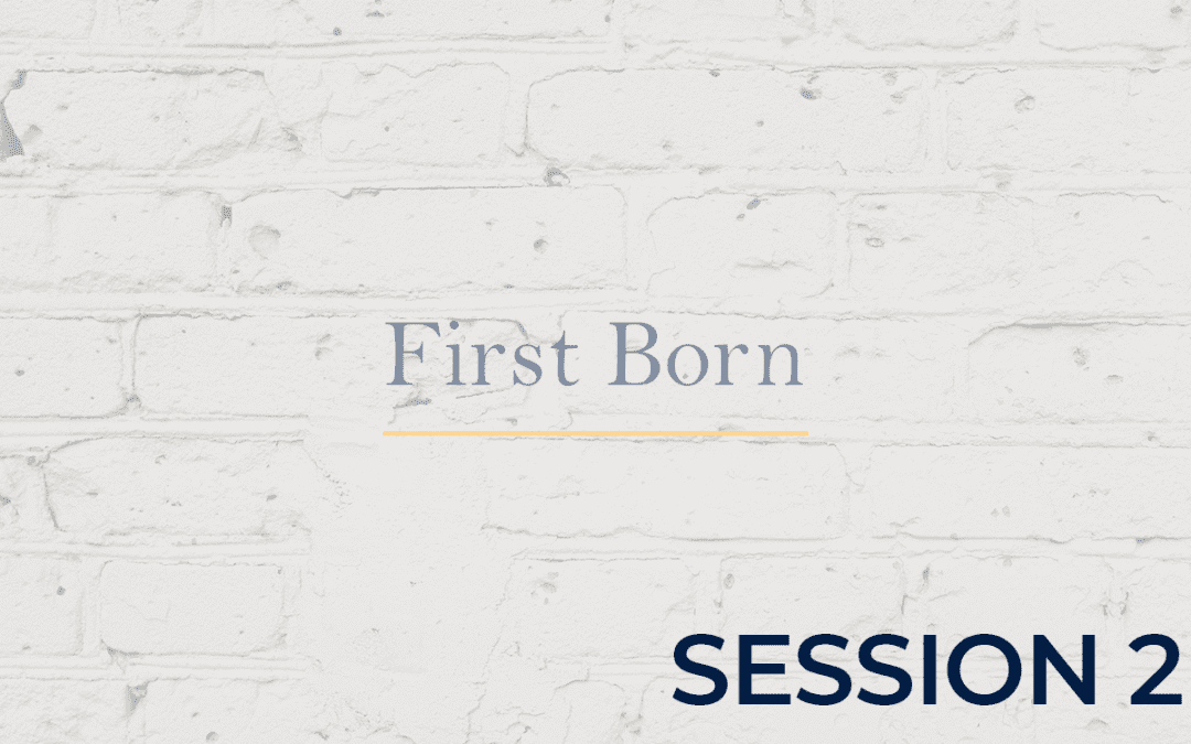 First Born - Session 2