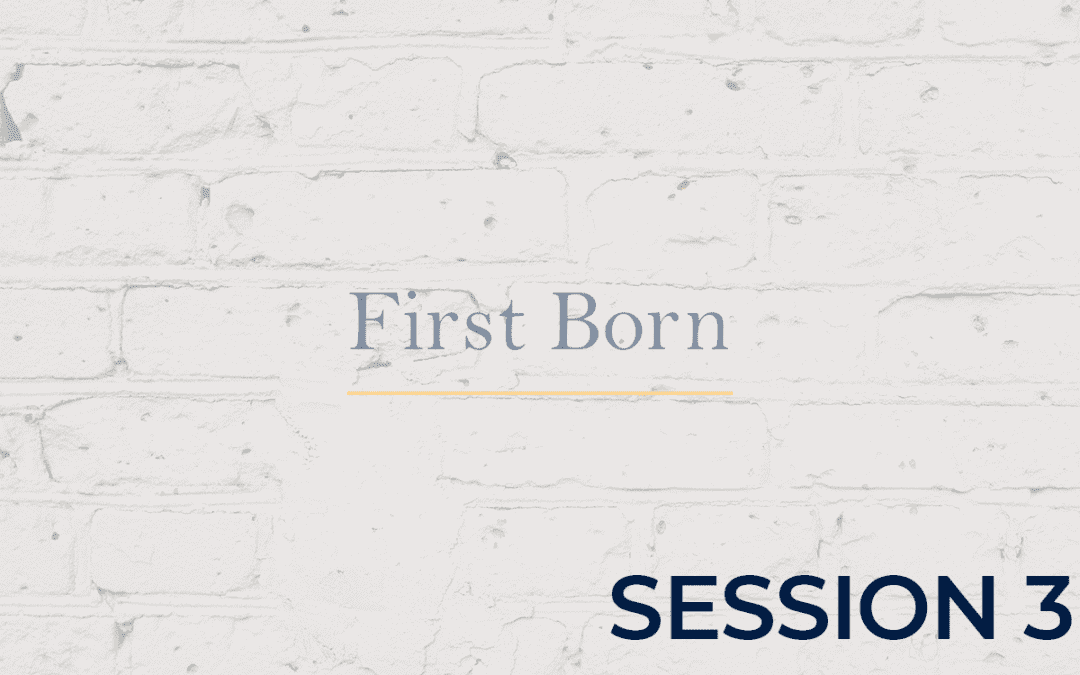 First Born - Session 3