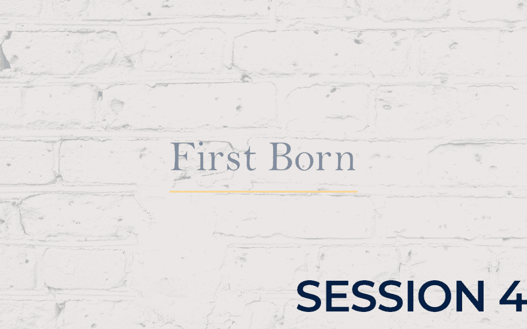 First Born - Session 4