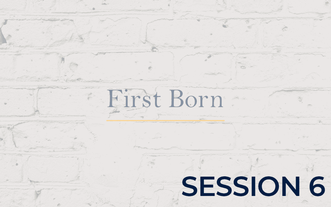 First Born - Session 6