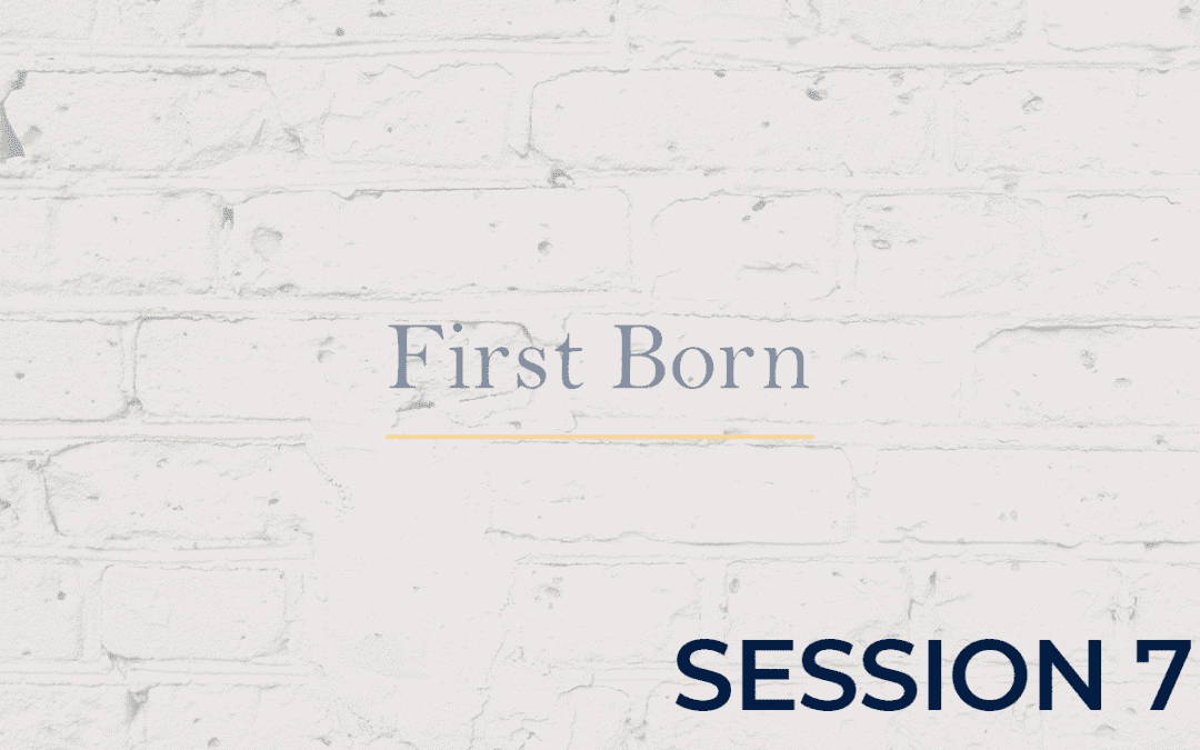 First Born - Session 7