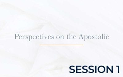 Perspectives on the Apostolic 2015 – Session 1