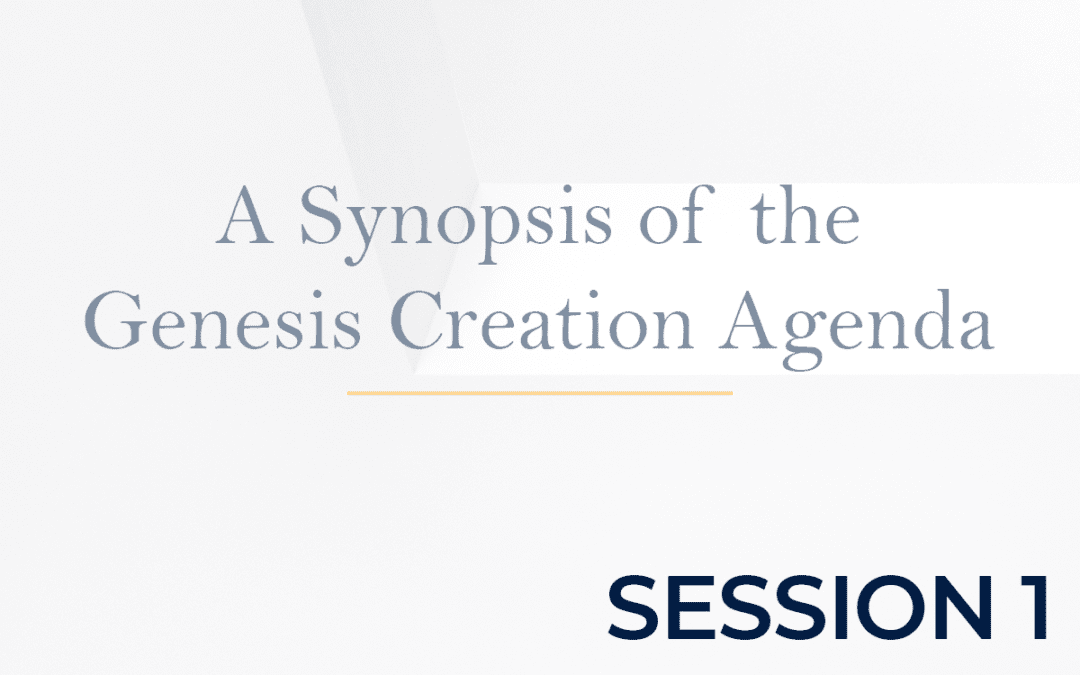 A Synopsis of the Genesis Creation Agenda Session 1