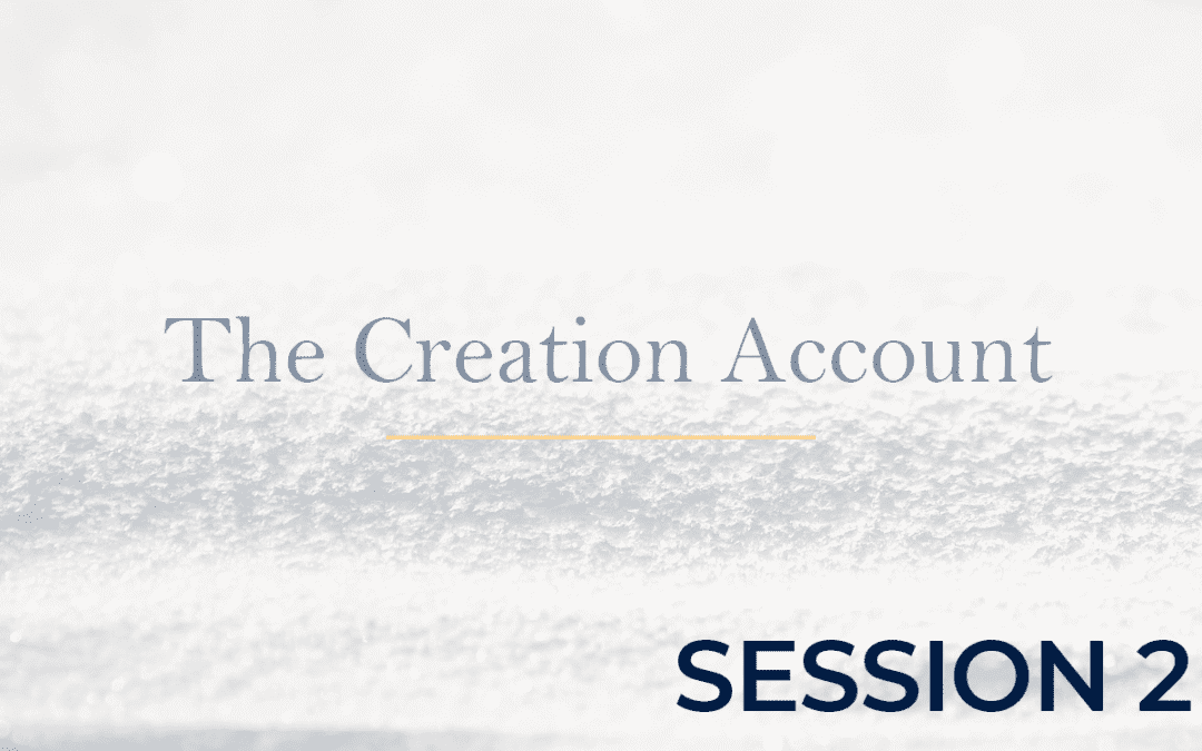 The Creation Account Session 2