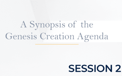 A Synopsis of the Genesis Creation Agenda – Session 2