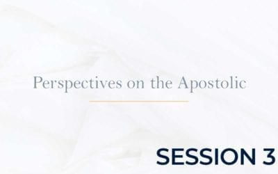 Perspectives on the Apostolic 2015 – Session 3