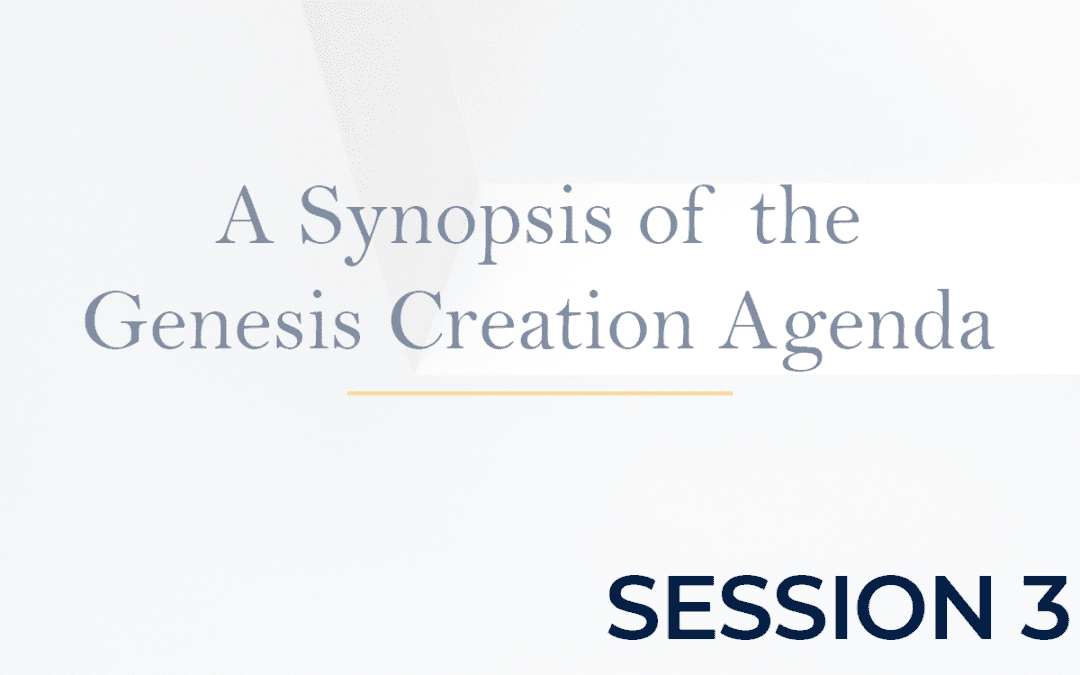 A Synopsis of the Genesis Creation Agenda Session 3